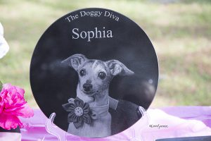 Memorial plaque for Sophia.