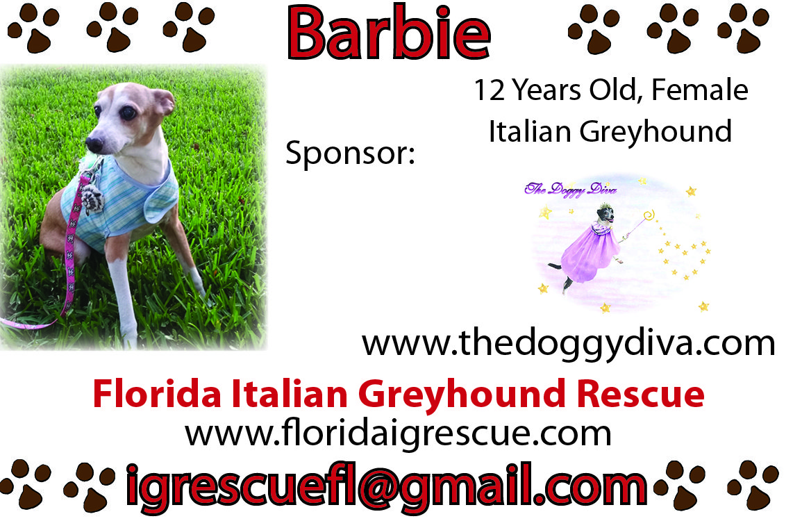 Doggy Diva Rescue Me Ad - Florida Italian Greyhound Rescue